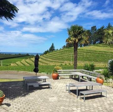 IMG_0403 New Zealand Napier